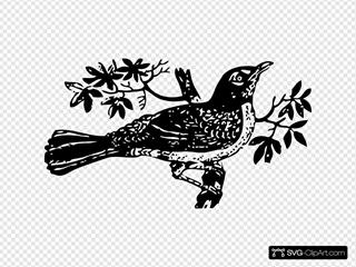 Singins Bird