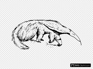 Anteater SVG Cliparts