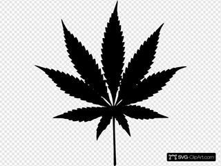 Addu Leaf