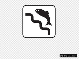 Fish Ladder White