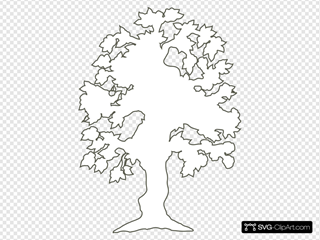 Simple Flowering Tree Outline