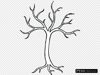 Coloring Bare Tree