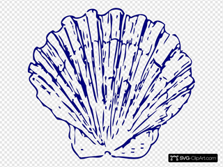 Blue Seashell Sand
