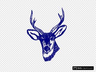 Deer Sea