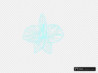 Blue Orchid   Clip Art