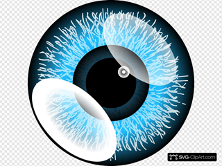 Blue Eye SVG Clipart