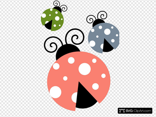 Multi Colored Lady Bugs