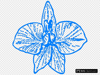 Blue Orchid Outline