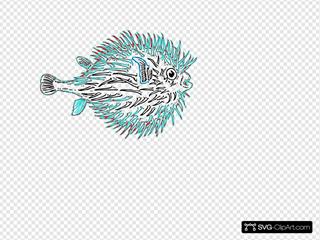 Blowfish Blue