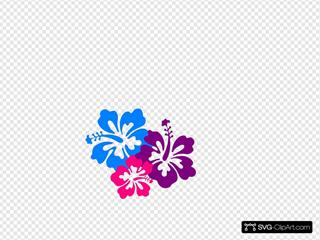 Hibiscus 10