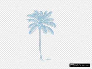 Palm Tree Sky Blue