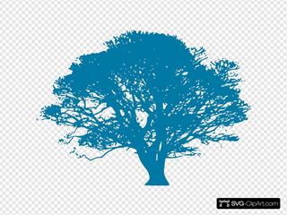 Blue Oak Legacy
