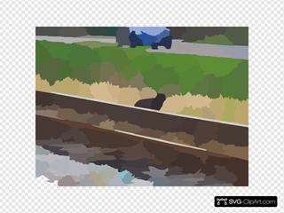 Dscn Cat On Railroad Tracks Shell Road