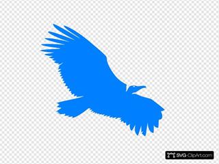 Blue Vulture