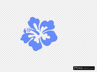 Light Blue Hibiscus Flower
