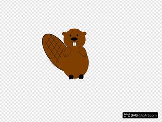 Beaver Black Brown