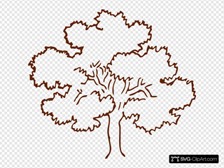 Red-brown Tree