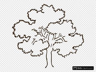 Dark Brown Tree
