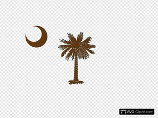 Sc Palmetto Tree