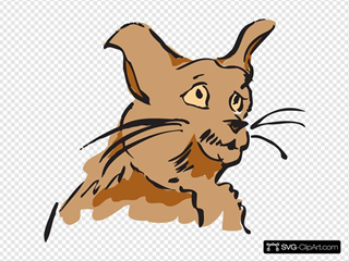 Brown Cat Looking To The Side