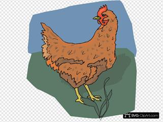 Brown Chicken Looking Back