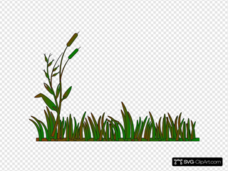 Cattails Outline Green/brown
