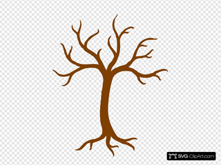Bare Tree With Roots