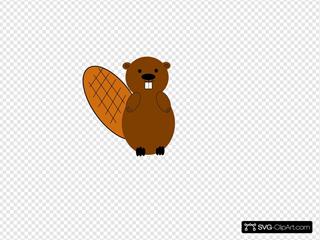 Beaver Final