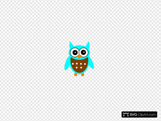 Turquoise Brown Owl