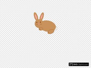 Rabbit No Smile