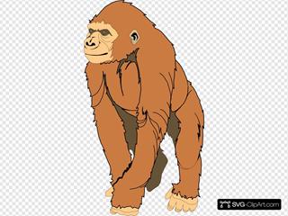 Brown Ape