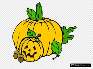 Pumpkins Colour