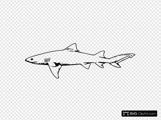 Lemon Shark SVG Cliparts