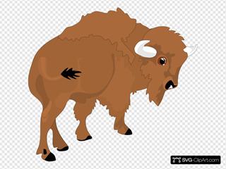 Cartoon Bison Rear View