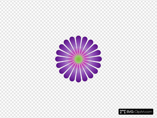 Purple Daisy Clip art, Icon and SVG - SVG Clipart