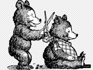 Bear Gets Haircut