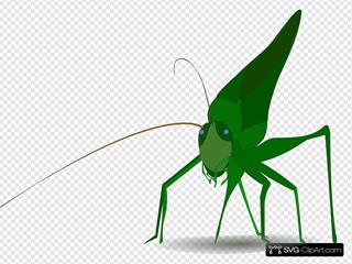Emeza Grasshopper