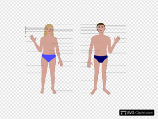 Cartoon Human Body Parts