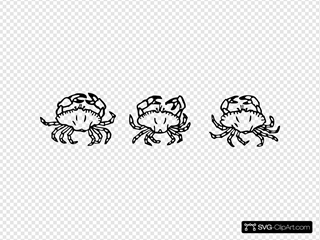 Outline Crabs