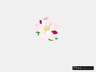 Apple Blossom SVG Clipart