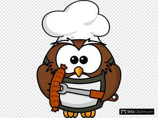 Owl Cook