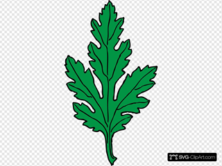 Ivy Leaf Green Chrysanthemum