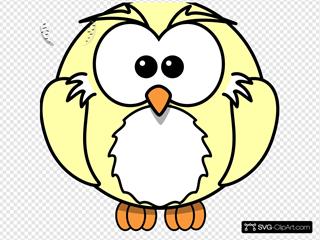 Owl Harry