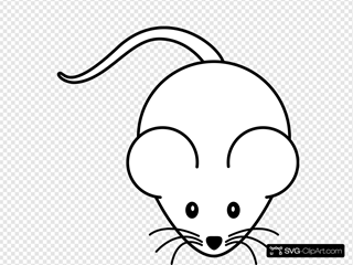 Mouse Black White