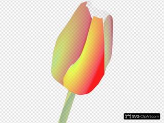 Cartoon Tulip