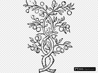 Fruit Tree Branches Clipart