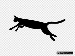Jumping Leaping Cat