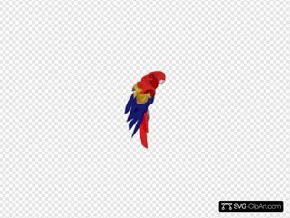 Blurred Parrot Clipart