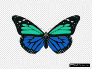 Turquoise And Blue Butterfly
