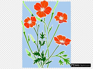 Colored Poppy Stained Glass